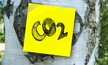 post-it met woor CO2 is geplakt op de bast van een boom
